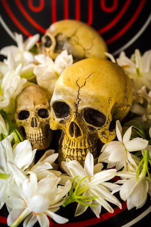 corpse flower: still life with skull and  flowers on abstract background