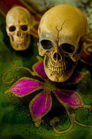 corpse flower: still life with skull on abstract background