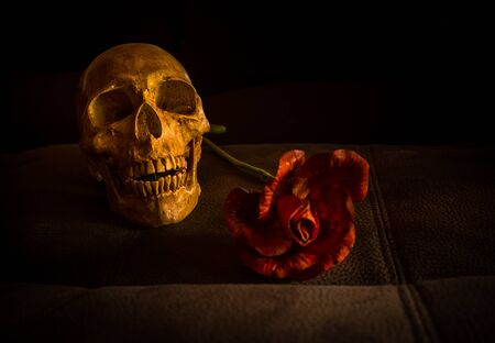 corpse flower: still life with skull and flower on vintage leather Stock Photo