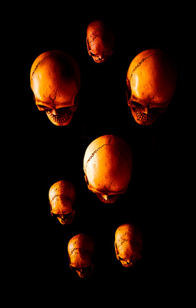 calaveras: Still life with group of skull  on dark background