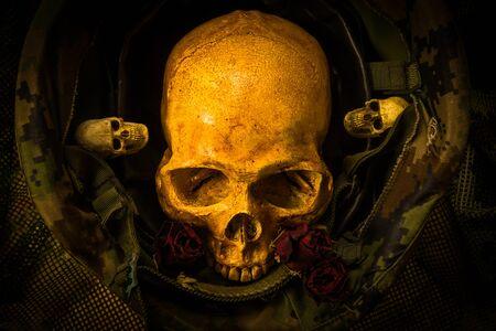 corpse flower: Still life with human skull in soldier helmet