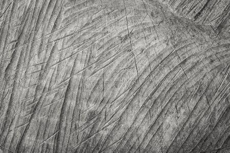 grudge: Pattern and texture from old wooden background Stock Photo