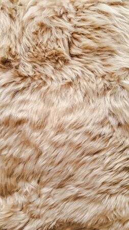 carpet clean: Pattern of background from soft skin texture