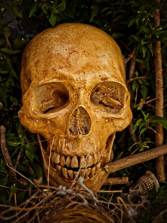 La Cara De Tres Cráneo Abstracto Con La Pierna Y El Brazo Del Cuerpo ...