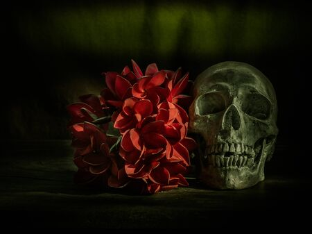 corpse flower: Still life with human skull and flowers on dark background
