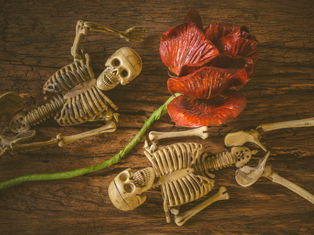 corpse flower: Still life with human skull on wooden background ,Love concept