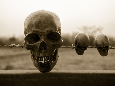 Still life with human skull on barb wire