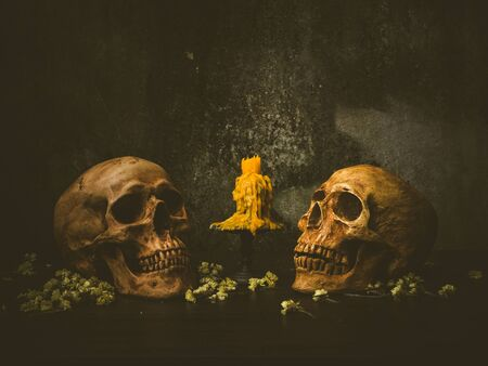 Still life with twin human skull and candle on abstract background