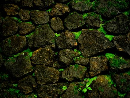 Pattern and texture from green rock background