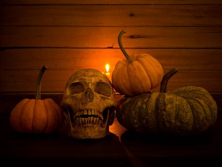 Still life with human skull and pumpkin, Vintage style