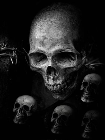 Still life with group of human skull on barb wire