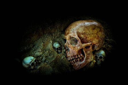 Still life group of human skull on sand background