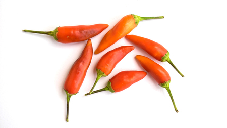 red chilly: red chilly peppers isolated on a white background