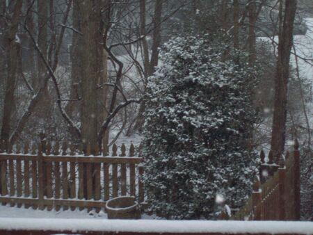Winter Deck Imagens