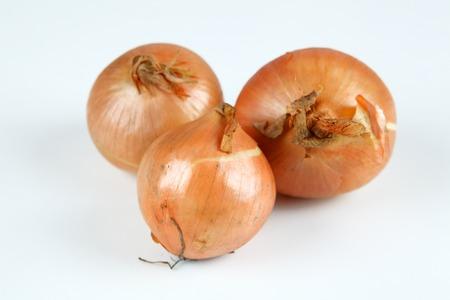 cebollas: cebolla