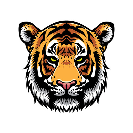 tiger head vector graphic illustration with color