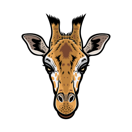 giraffe head vector graphic illustration with color
