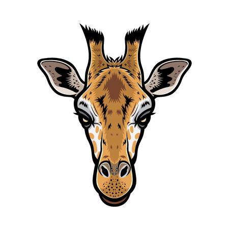 jirafa cute: vector de cabeza de jirafa ilustraci�n gr�fica con el color Vectores