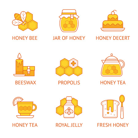 Vector linear icon set with honey and beekeeping product signs. Çizim