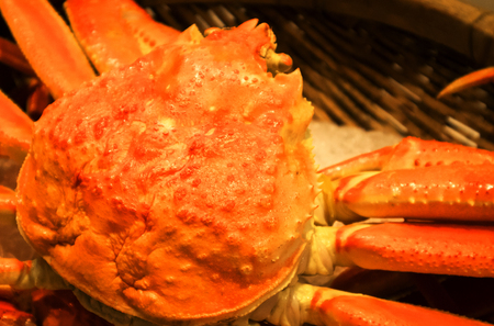 The fresh crab in ices