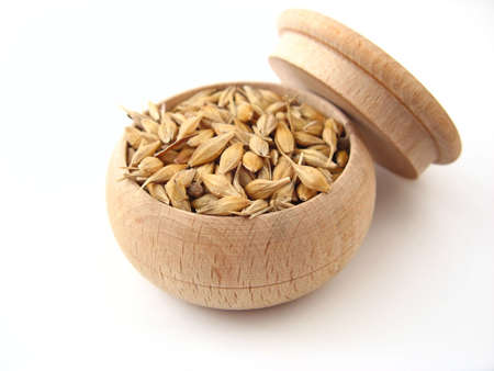 Barley in wooden pot over white.