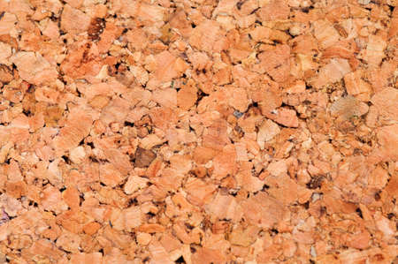 A very sharp and detailed cork texture Stock Photo - 3674260