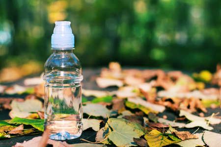 autumn motif: Bottle of water in the autumn motif