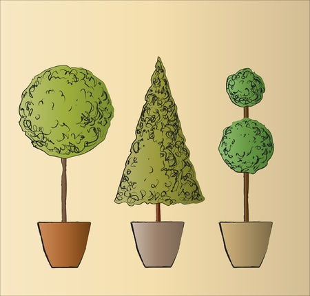 A vector illustration of tree standard trees. Sketch style.
