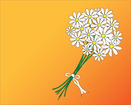 posy: A vector illustration of a posy of daisies tied with a white ribbon. Space for text.
