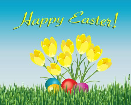 An Easter card depicting coloured eggs hidden under spring crocuses. Vector format fully editable Vector