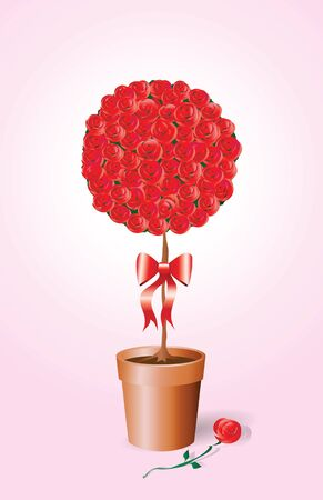 A vector illustration of a standard rose bush tied with a bow.  Vector