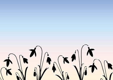 A vector illustration of snowdrop silhouettes against pale winter sky with space for text Vector