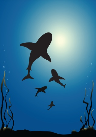 dorsal: Illustration of sharks silhouetted against the surface of the sea Illustration