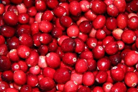 Fresh cranberry background photo