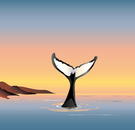 An illustration of a whale fluke above the water at dusk Vector