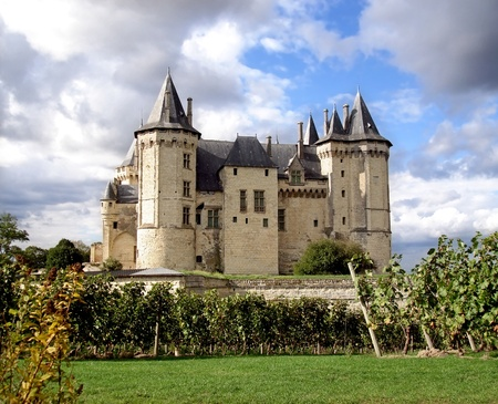 monument valley: Saumur Chateau with dramatic sky behind and grapevines in the foreground Stock Photo