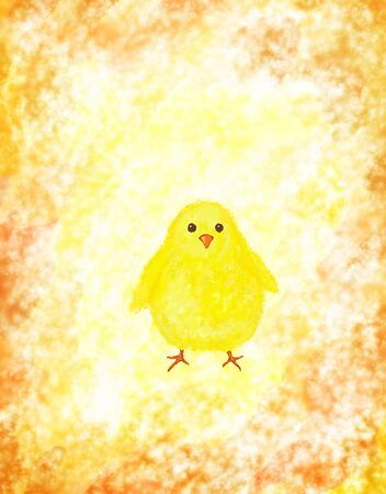 Easter chick on grunge background with copy space photo