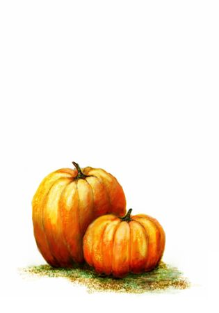 A watercolour illustration of two pumpkins on white background with copy space Stock Illustration - 12934733