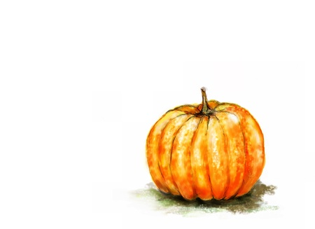 A watercolour of a pumpkin on white with copy space Stock Photo - 12934734