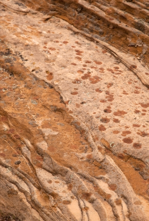 Closeup of the unusual rock textures of Zion National Park, USA photo