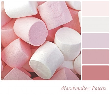Marshmallow background colour palette with complimentarty swatches