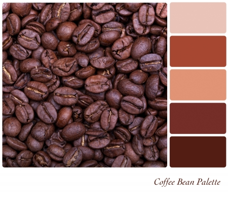 complimentary: Coffe bean background colour palette with complimentary swatches  Stock Photo