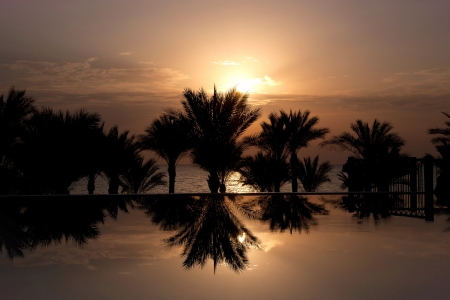 The sun rising over infinity pool, palm trees and Red Sea, Sharm el Sheikh, Egypt photo