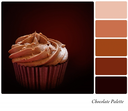 complimentary: Chocolate cupcake palette with complimentary colour swatches