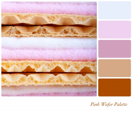 complimentary: Pink marshmallow wafer palette with complimentary colour swatches