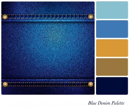 Blue denim palette with complimentary colour swatches  Vector