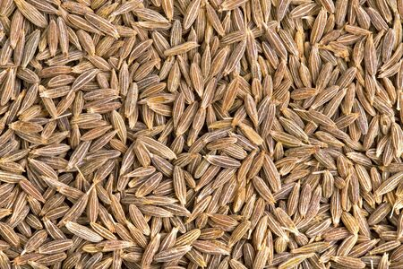 A background of dried cumin seeds  photo
