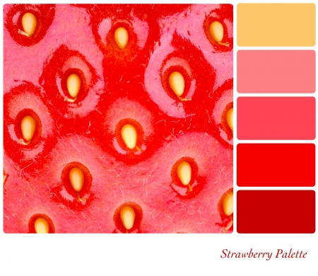 color tone: A macro shot of a fresh, juicy strawberry. Colour palette with complimentary colour swatches