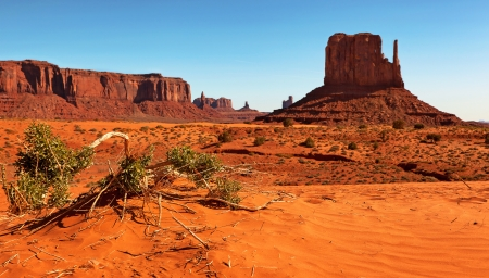 Monument Valley, Utah, USA. Selective focus on fallen branch in foreground. photo