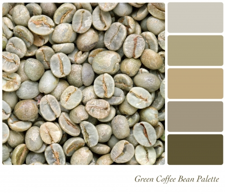 A background of unroasted coffee beans in a colour palette with complimentary colour swatches